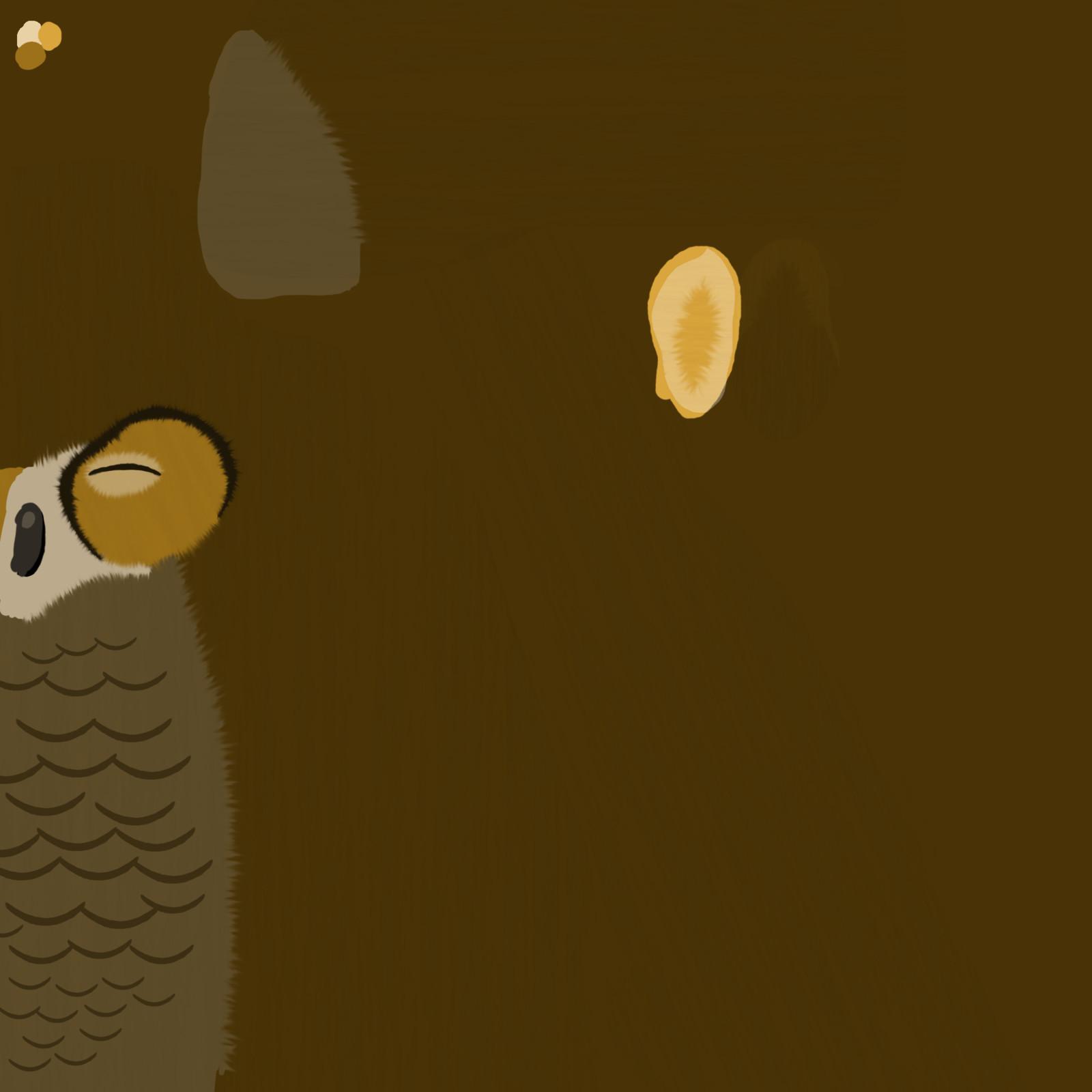 Owl texture