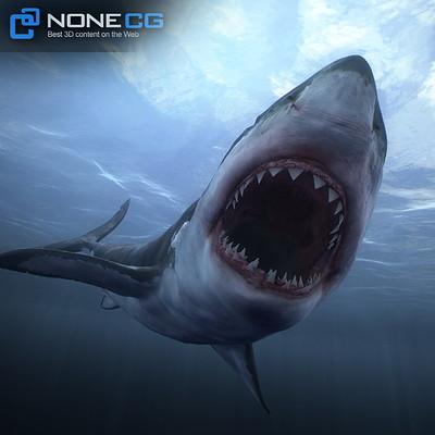 Nonecg shark nonecg 10