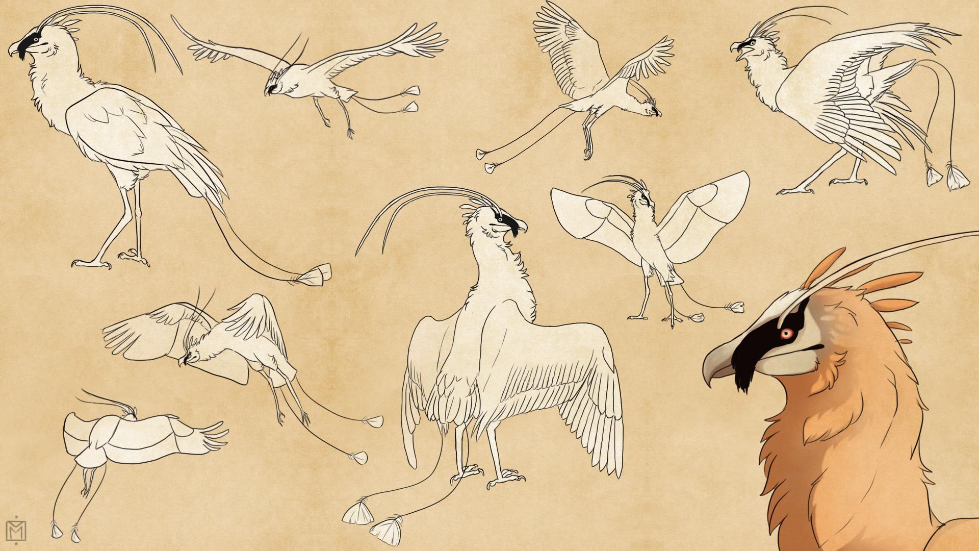Marie maube oiseau invente