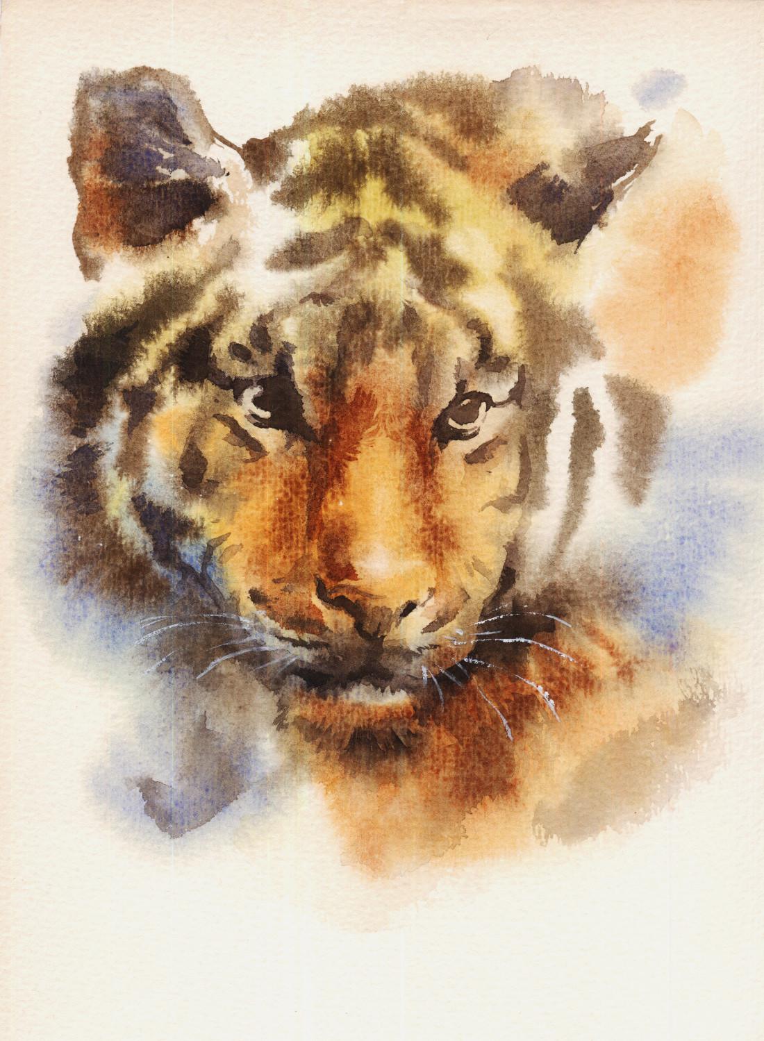 Zoltan korcsok tigerhex