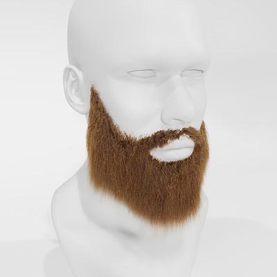 Asbjorn olsen hairtestbeard