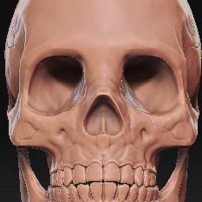 T d chiu skull wip 001