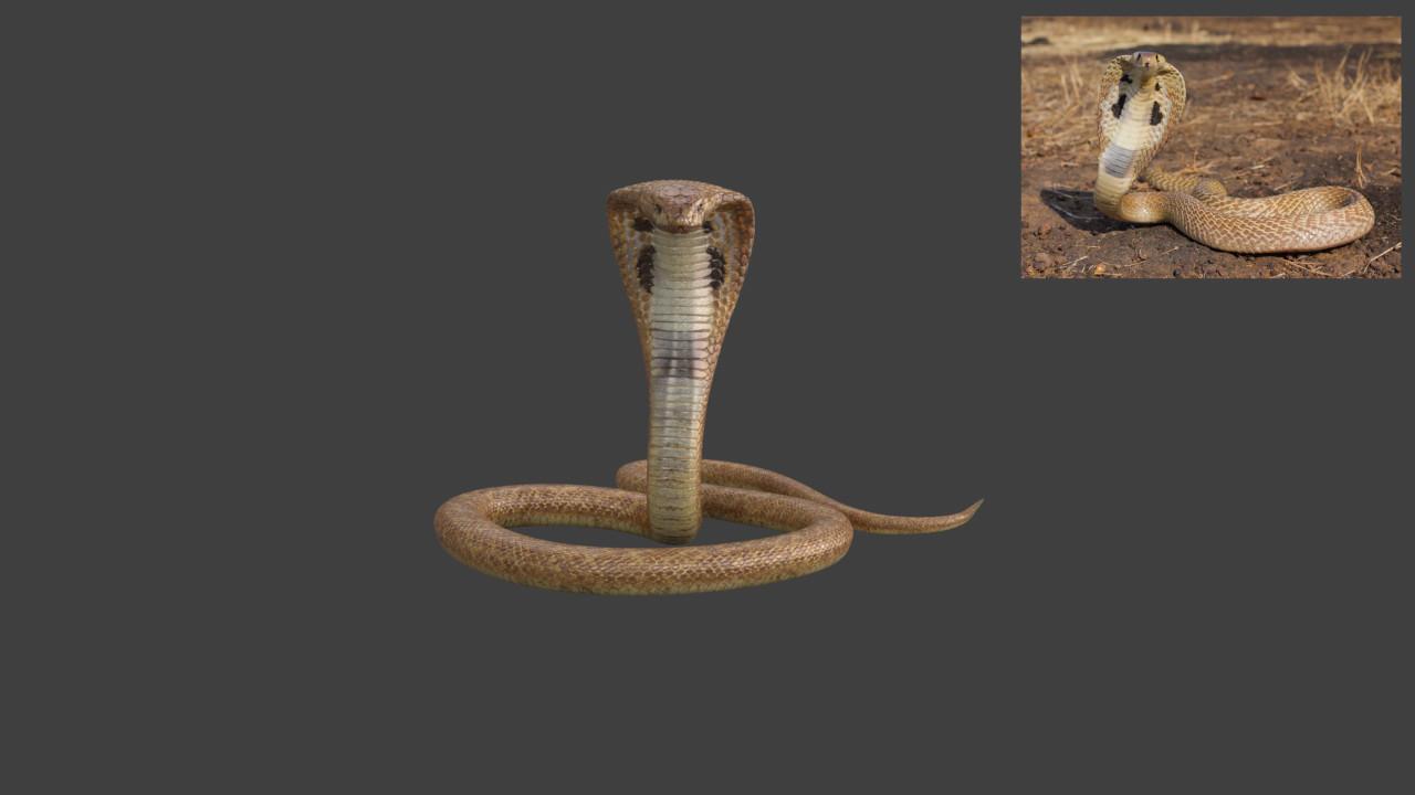Shashi Kumar Cobra Snake Worked For Telugu Movie