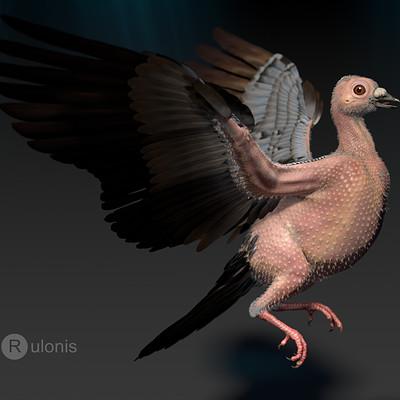 Dariusz andrulonis ptak 02