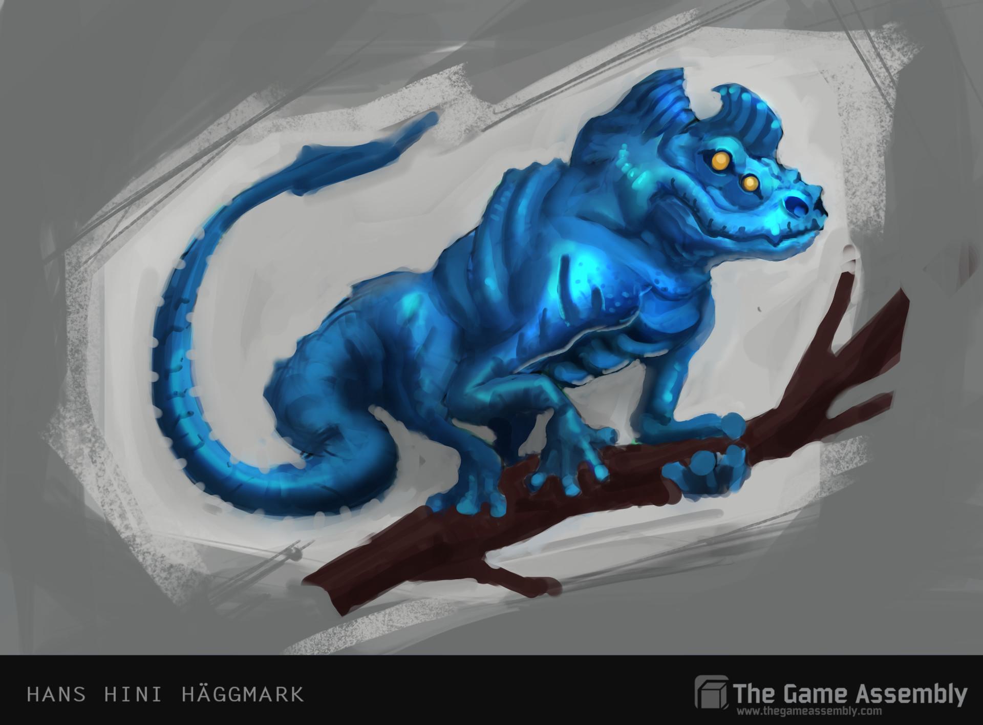 Hini haggmark gecko hanshinihaggmark