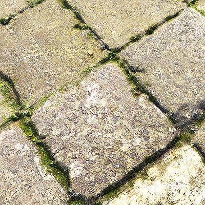 Muhammx sohail anwar concrete tile floor grass 009
