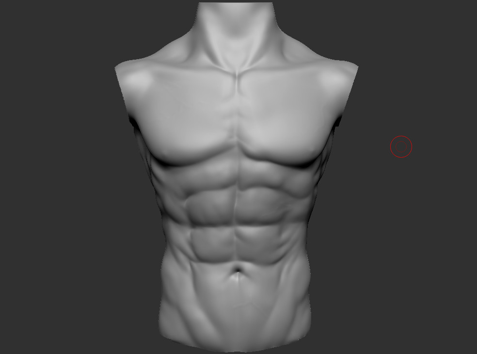 Tomas Sosto - male chest anatomy practice
