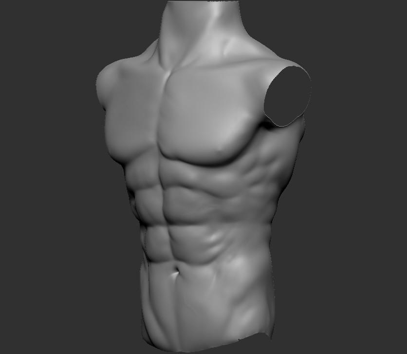 Tomas Sosto Male Chest Anatomy Practice