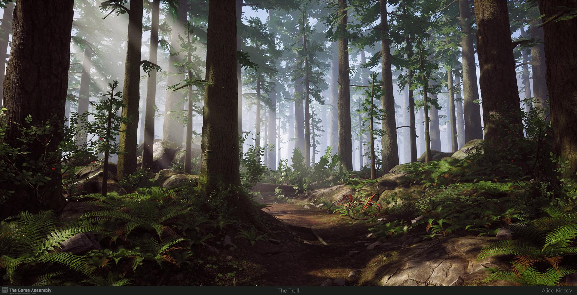 Alice kiosev alicekiosevpineforest01