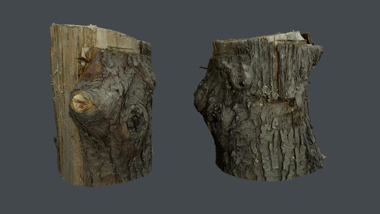 Wood Log Scan