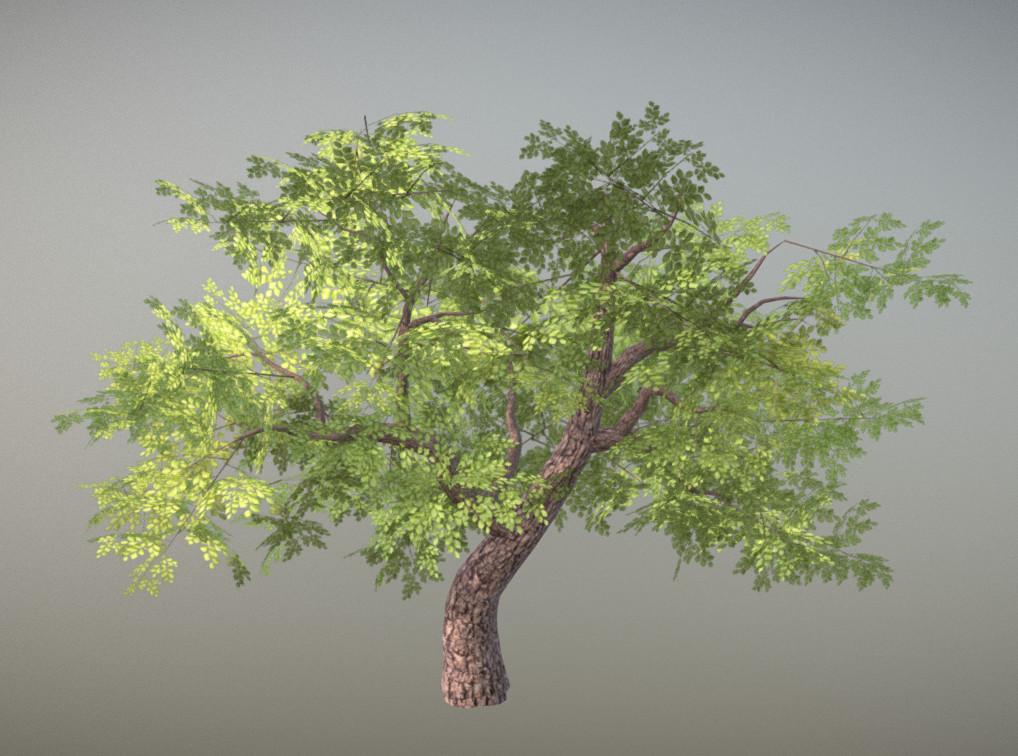 Jordan cameron tree 1