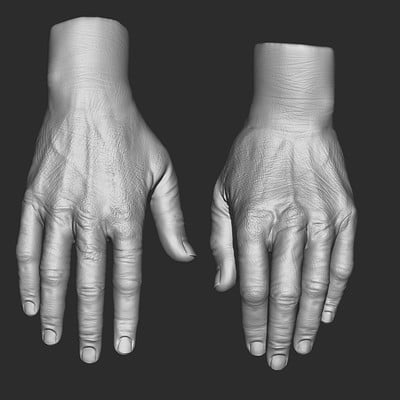 Realism study hand