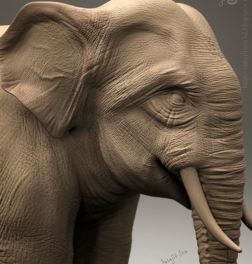 Surajit sen elephant sculpt reshare 14042018 l