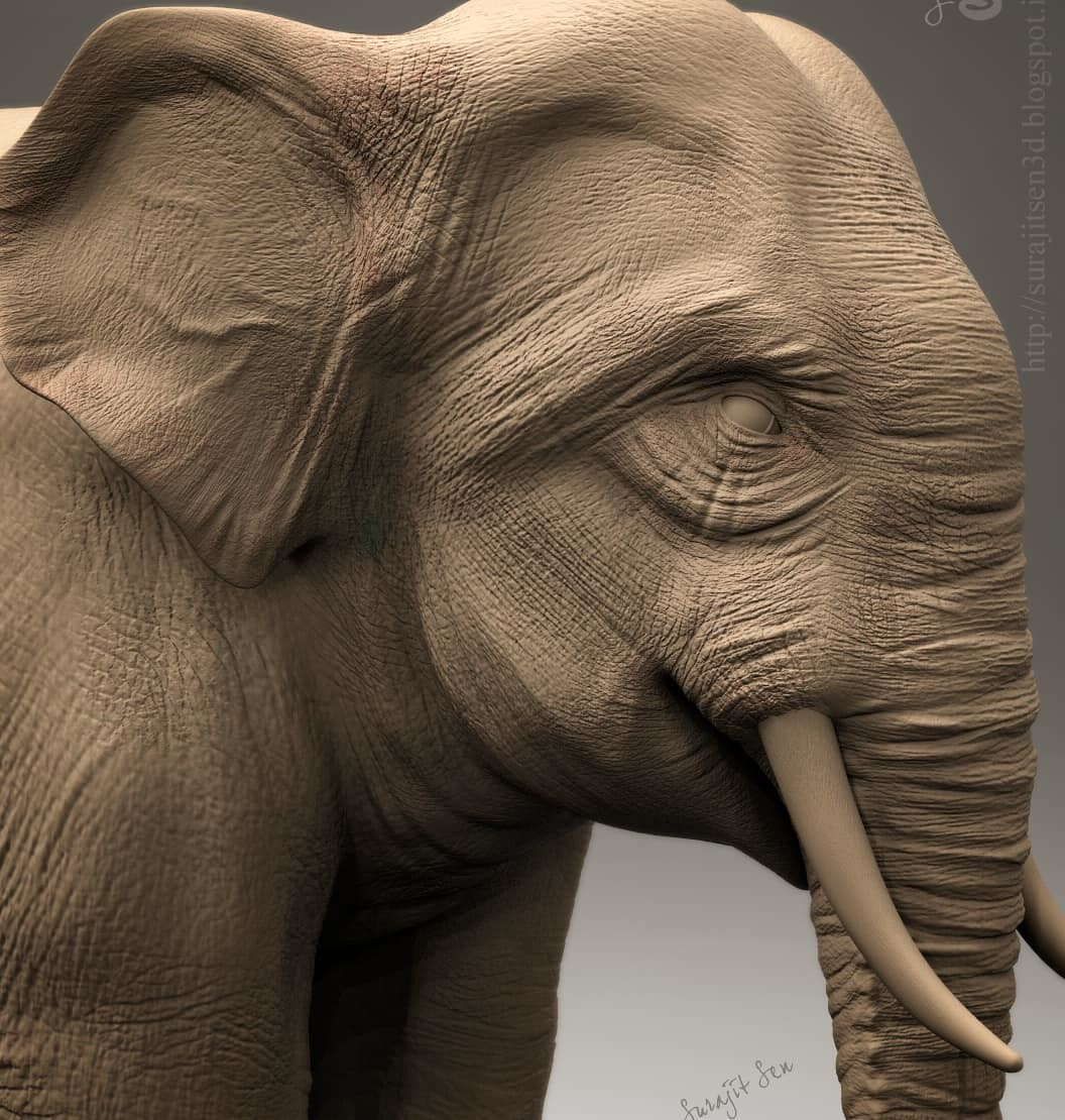 One of my old works. .Elephant Sculpt. .....today I did some work on face again. ...... :)