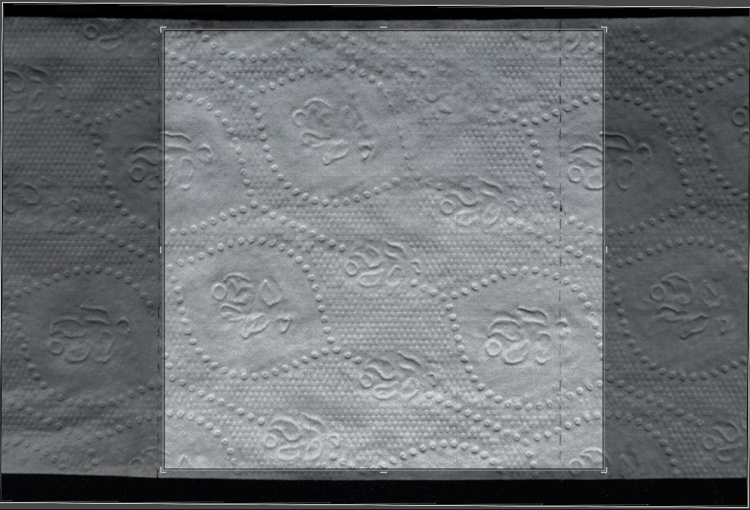 Dave riganelli toiletpaper11