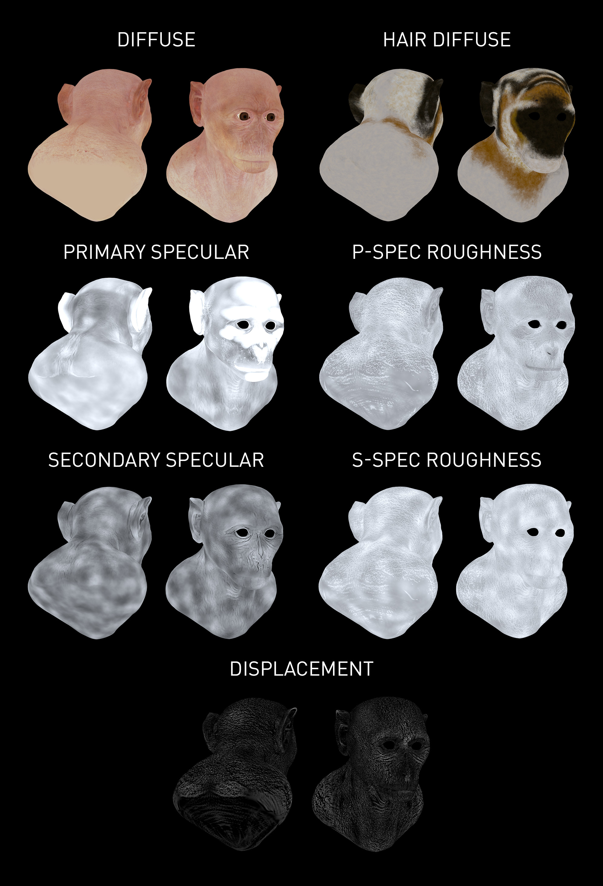 V-Ray alSurface Shader was used for the skin