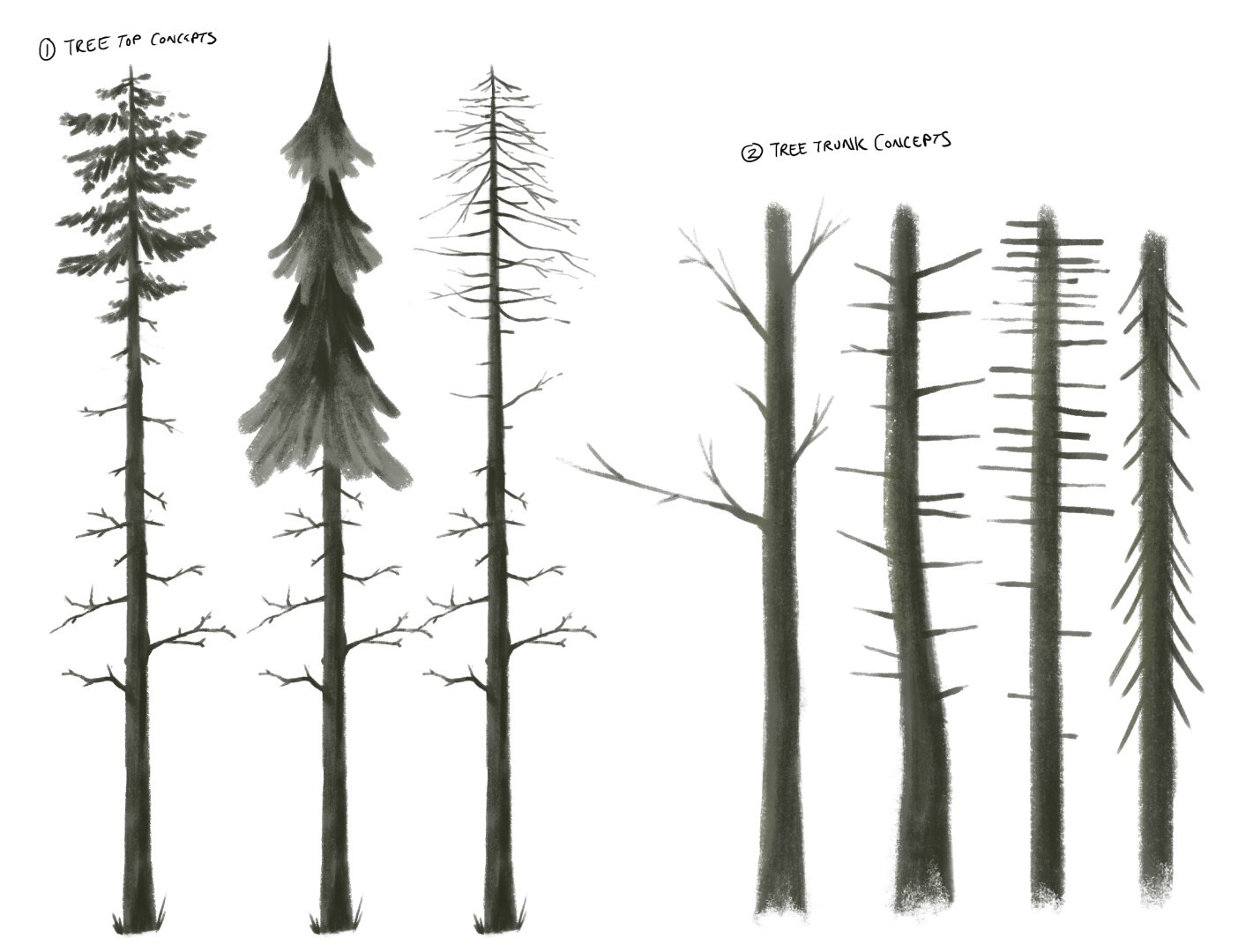 Ethan yazel imagebrew sketch trees 01 large