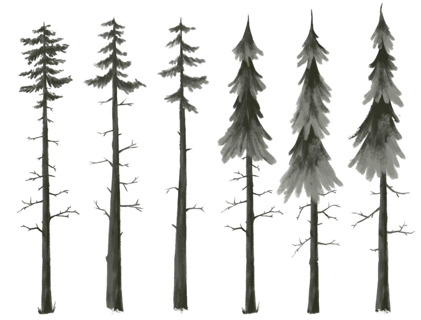 Ethan yazel imagebrew sketch trees 02 large
