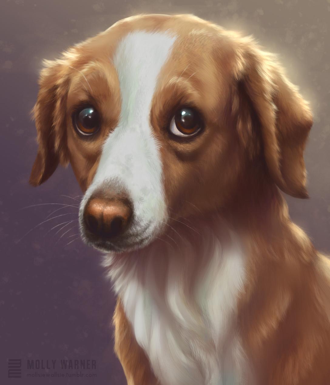 Molly warner sadie portrait final
