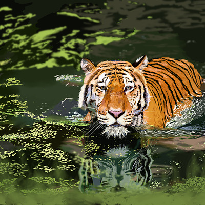Andre smith tiger in water low rez