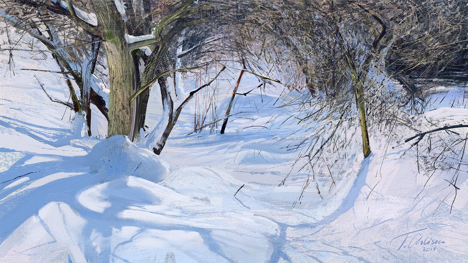 Tymoteusz chliszcz landscape100 by chliszcz