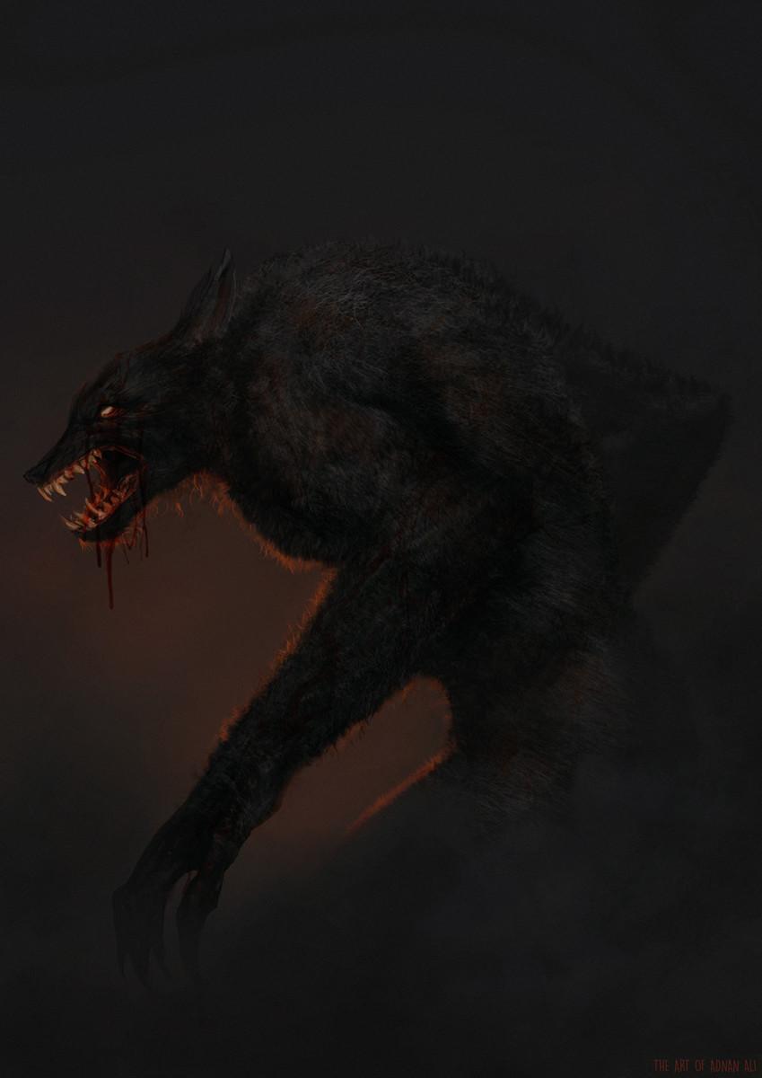 Adnan ali wolfstein