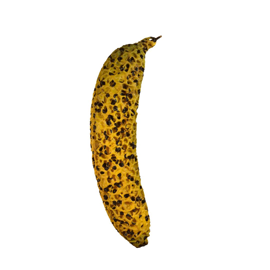 Gokhan dogan banana balls redshift rop1 00092