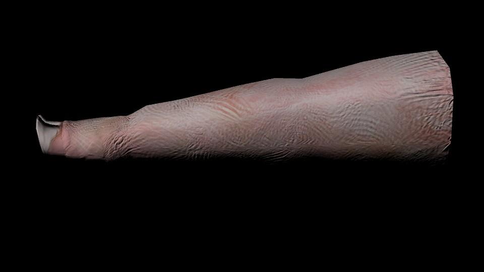 Danielle keeton piggy leg 2