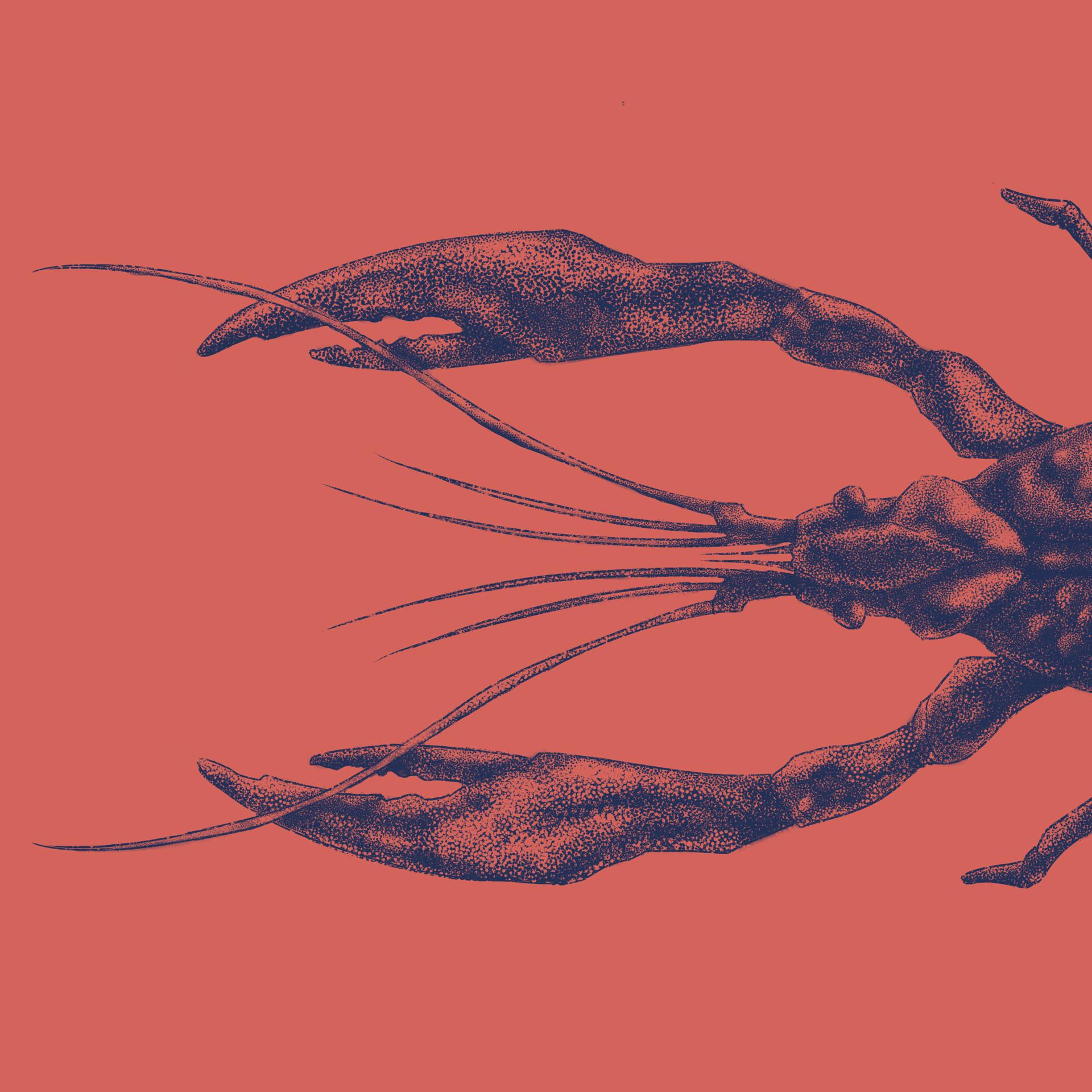 Marcos torres todos insta lagosta2