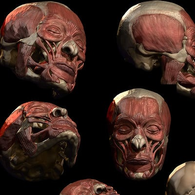 Dima kulakov face muscles compilation b