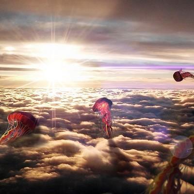 Carlos lopez jellyfish 1612x1077