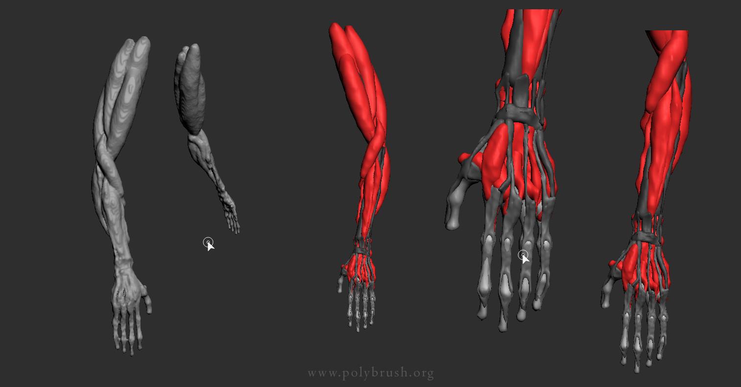 Arseniy korablev hand 1
