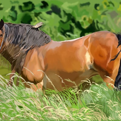 Andre smith horse in peace low rez