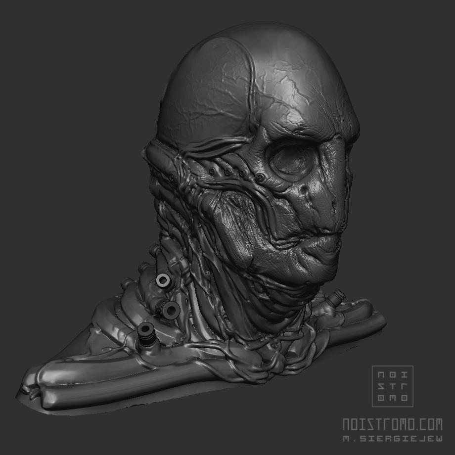 Marius siergiejew cyborg hex zb 001