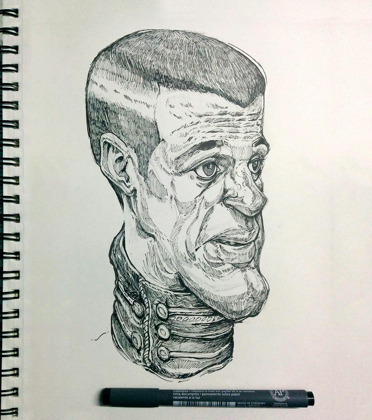 The narrow head