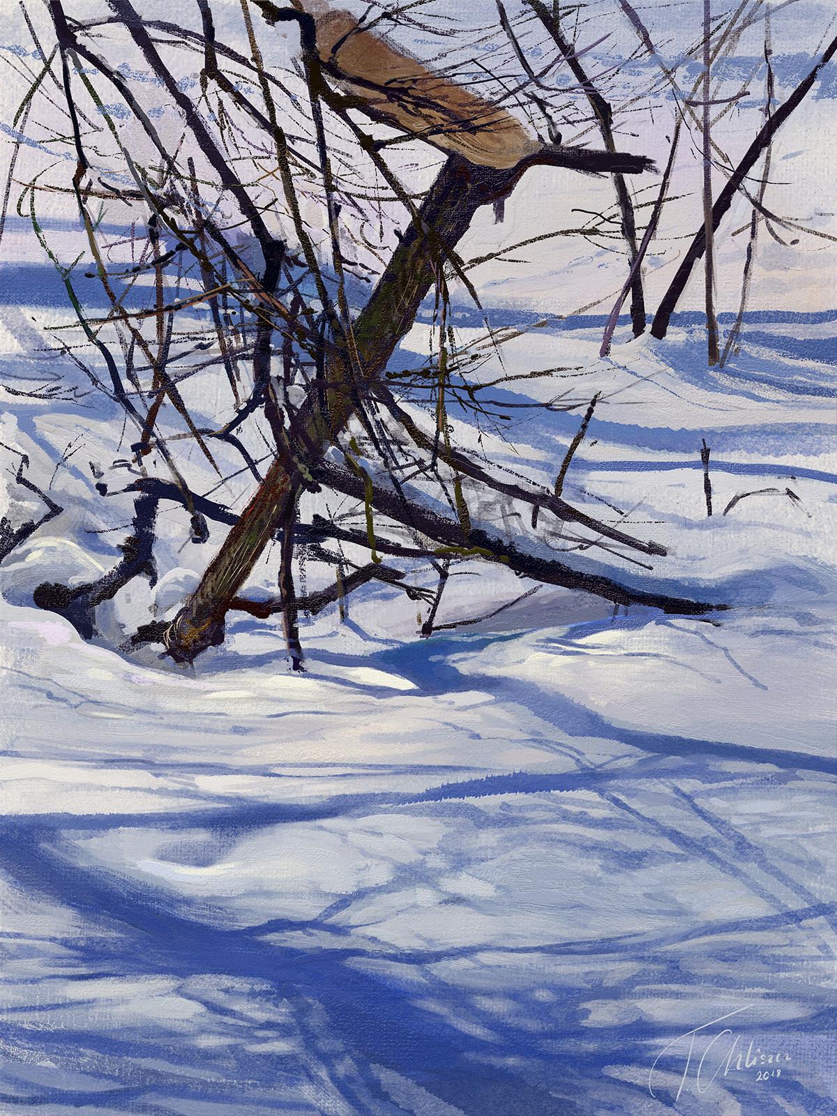 Tymoteusz chliszcz landscape81 by chliszcz
