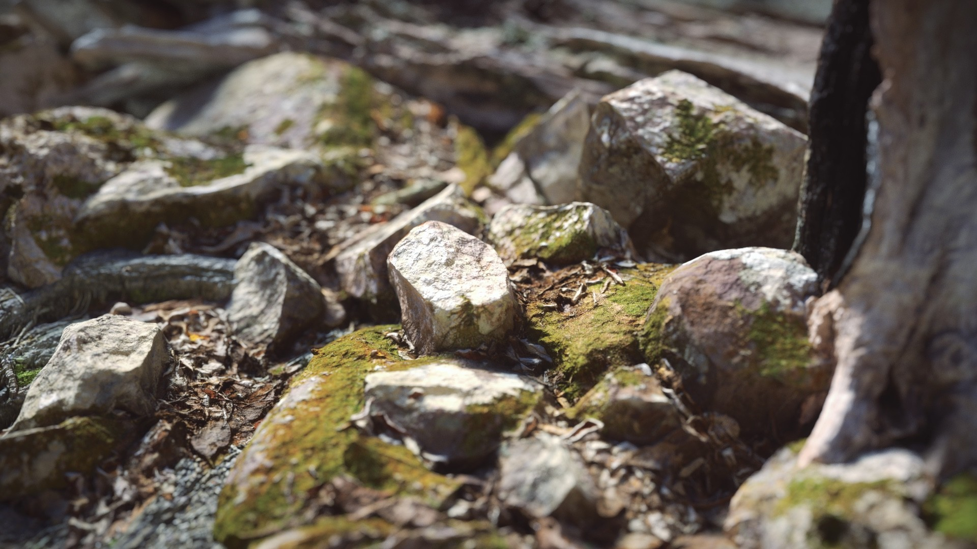 ArtStation - Mega scans + Real Displacement Texture - Micro