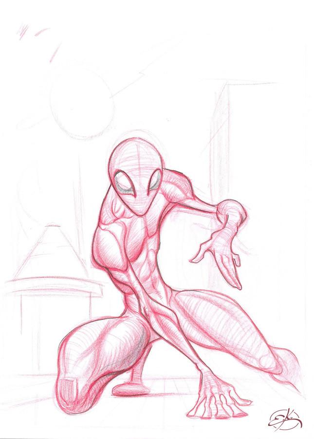 Erkan karagoez spidey sketch web