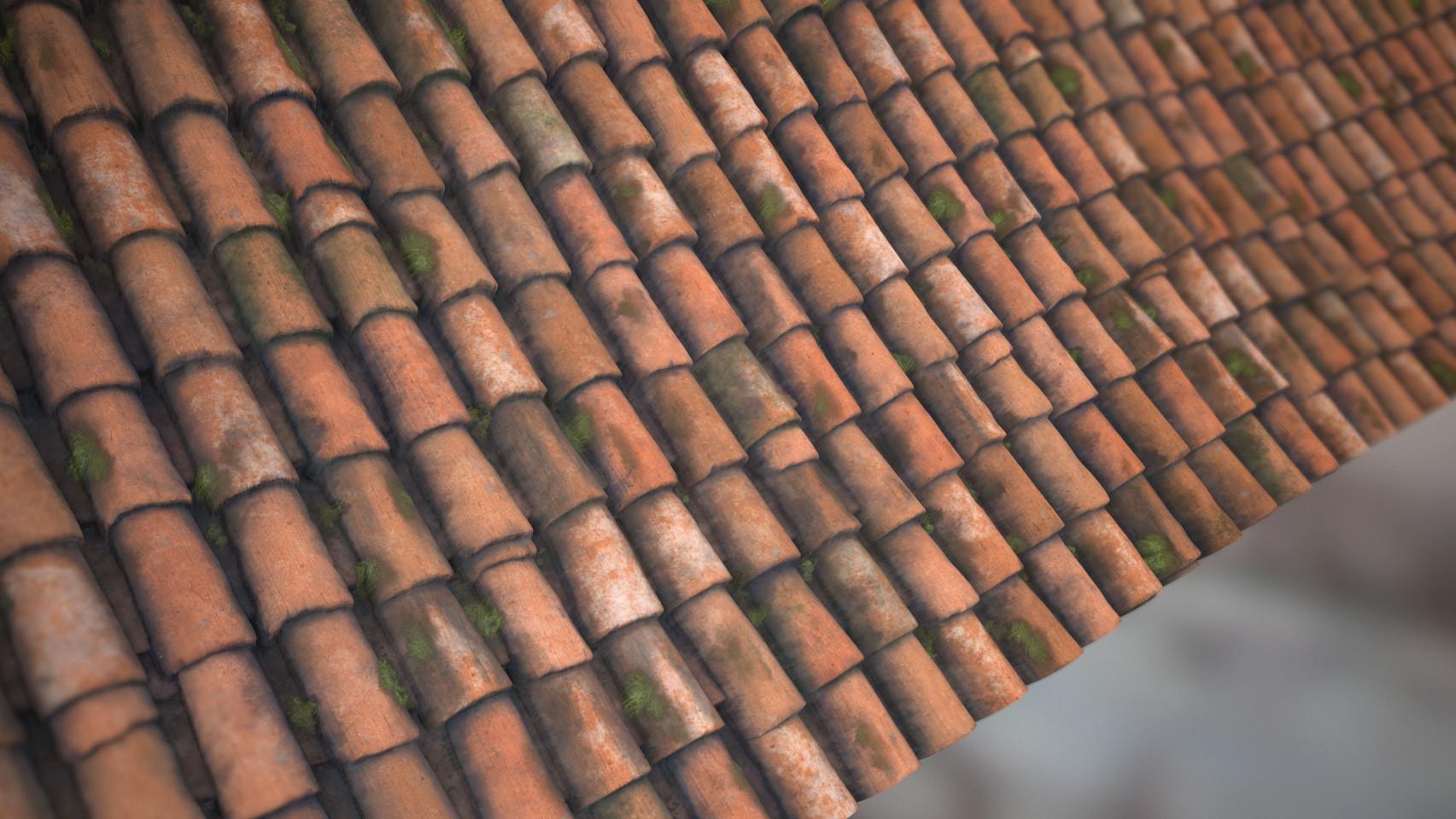 Alina godfrey roof tiles