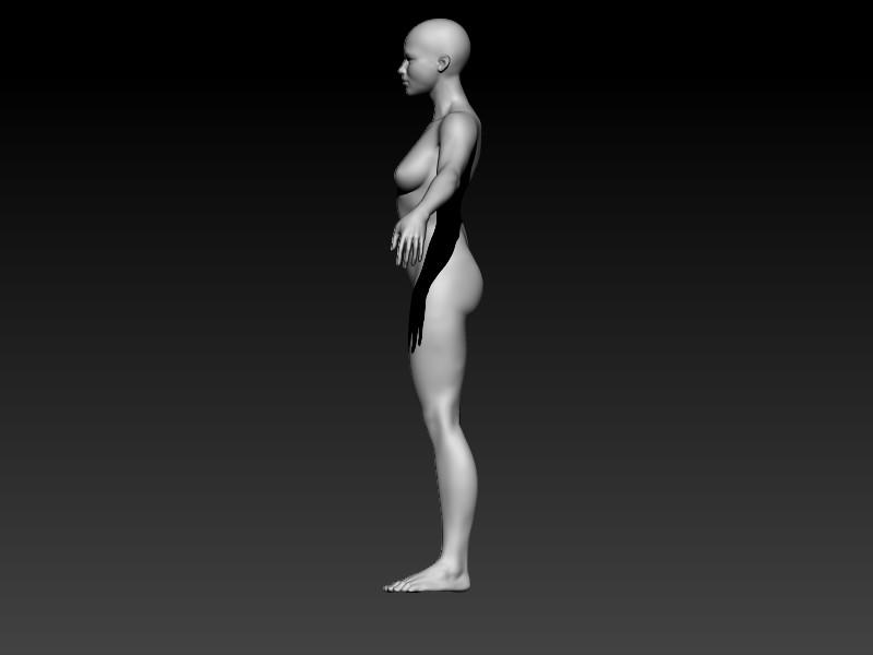 Elmo elbadry side view female anatomy