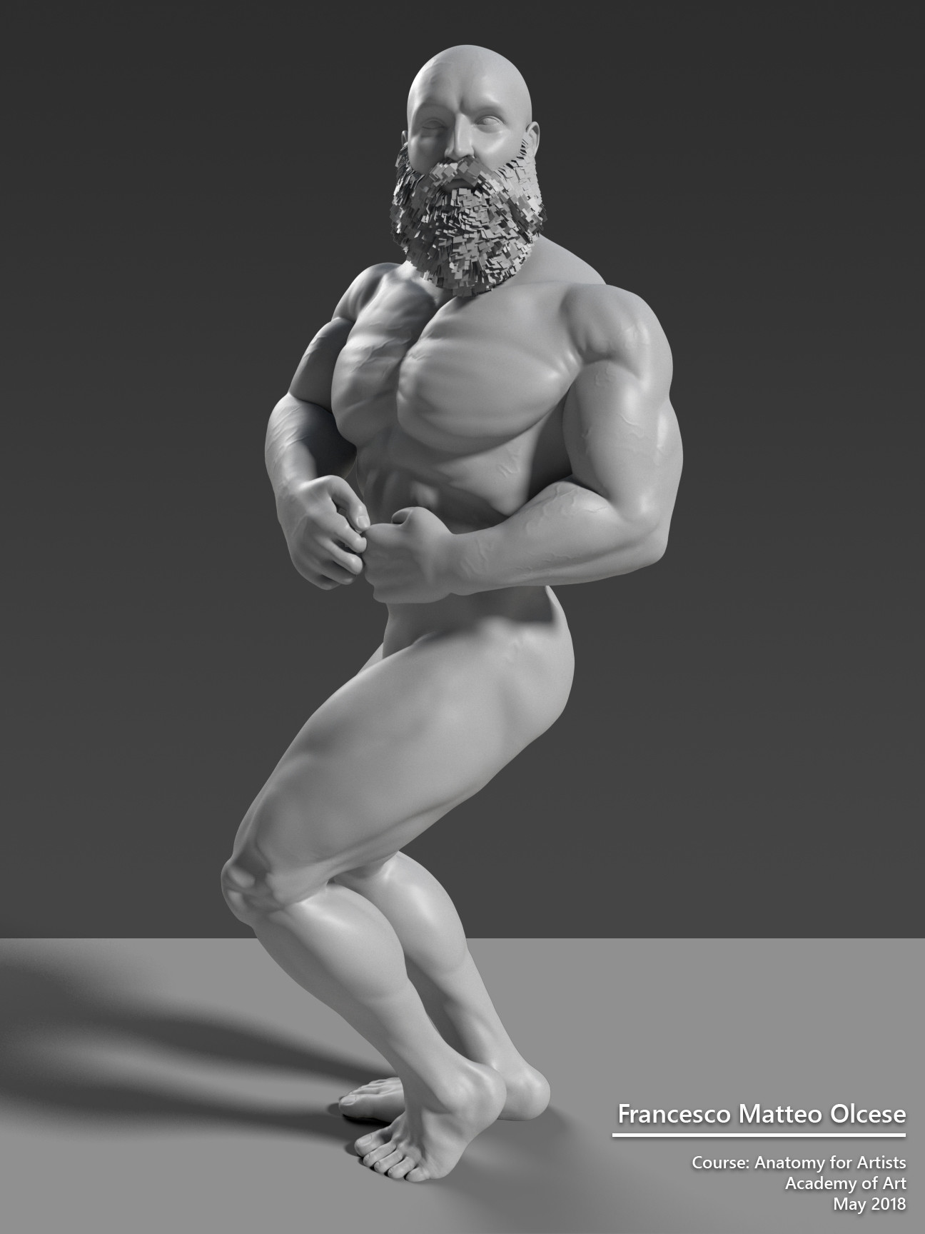 Francesco Matteo Olcese - Male Anatomy Study 02