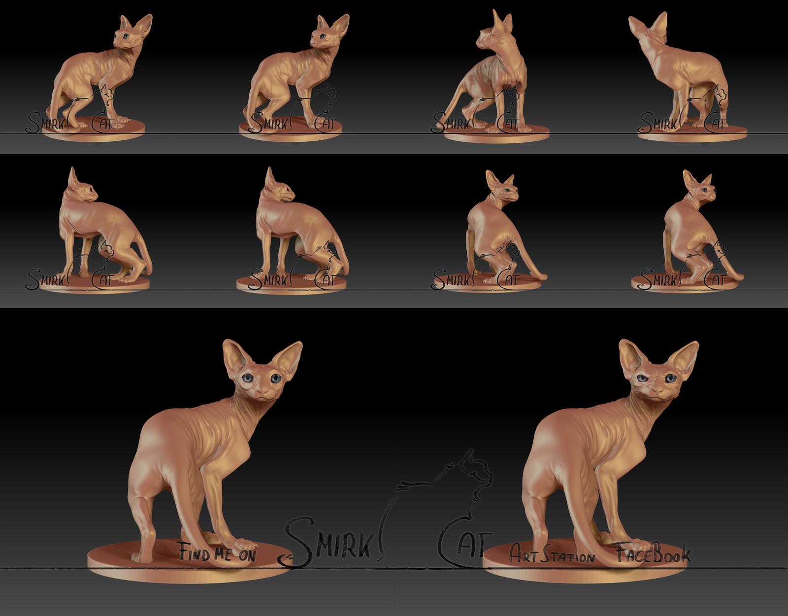 Sphynx Sculpt - Rendershots