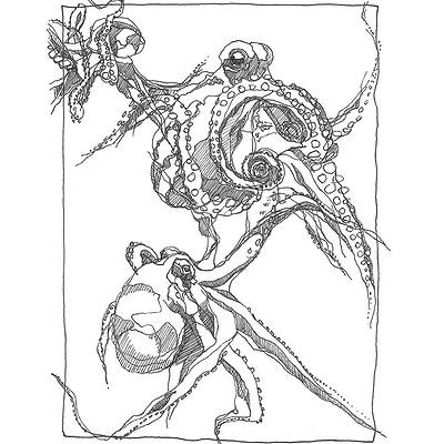 Gabriele crow octopus 2018 01