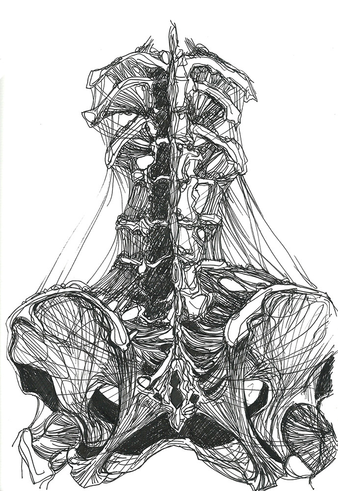 Gabriele crow lower spine by yade art d68r114