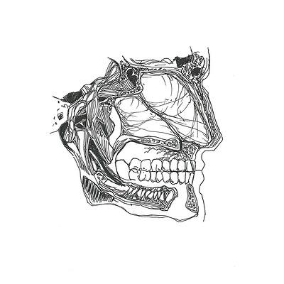 Gabriele crow face by yade art d68rs9u