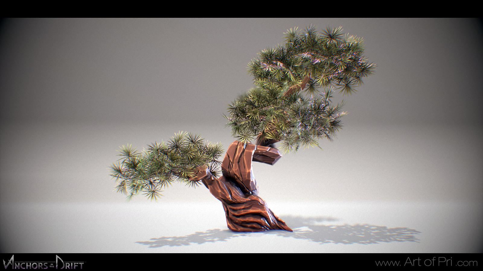 Priscilla firstenberg priscilla firstenberg bonsai03