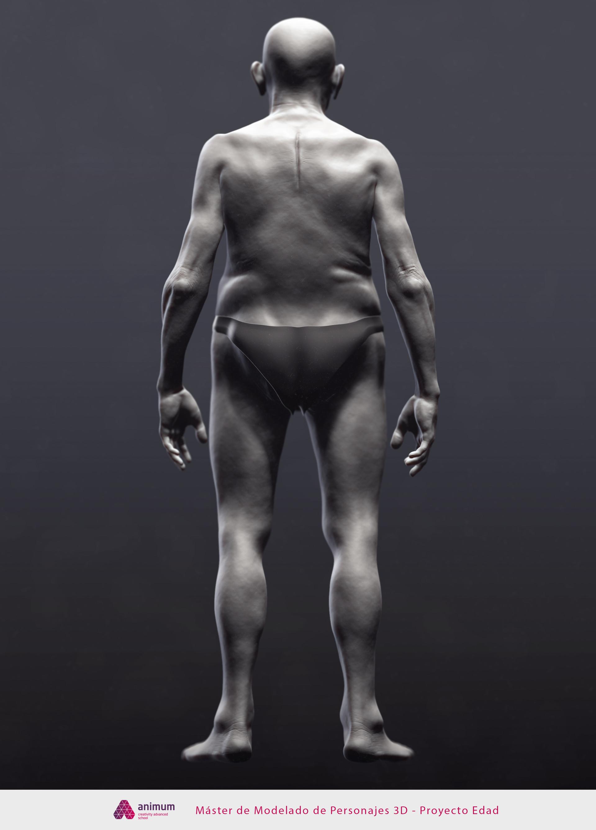 Jmn Leonés - Proyecto anatomía