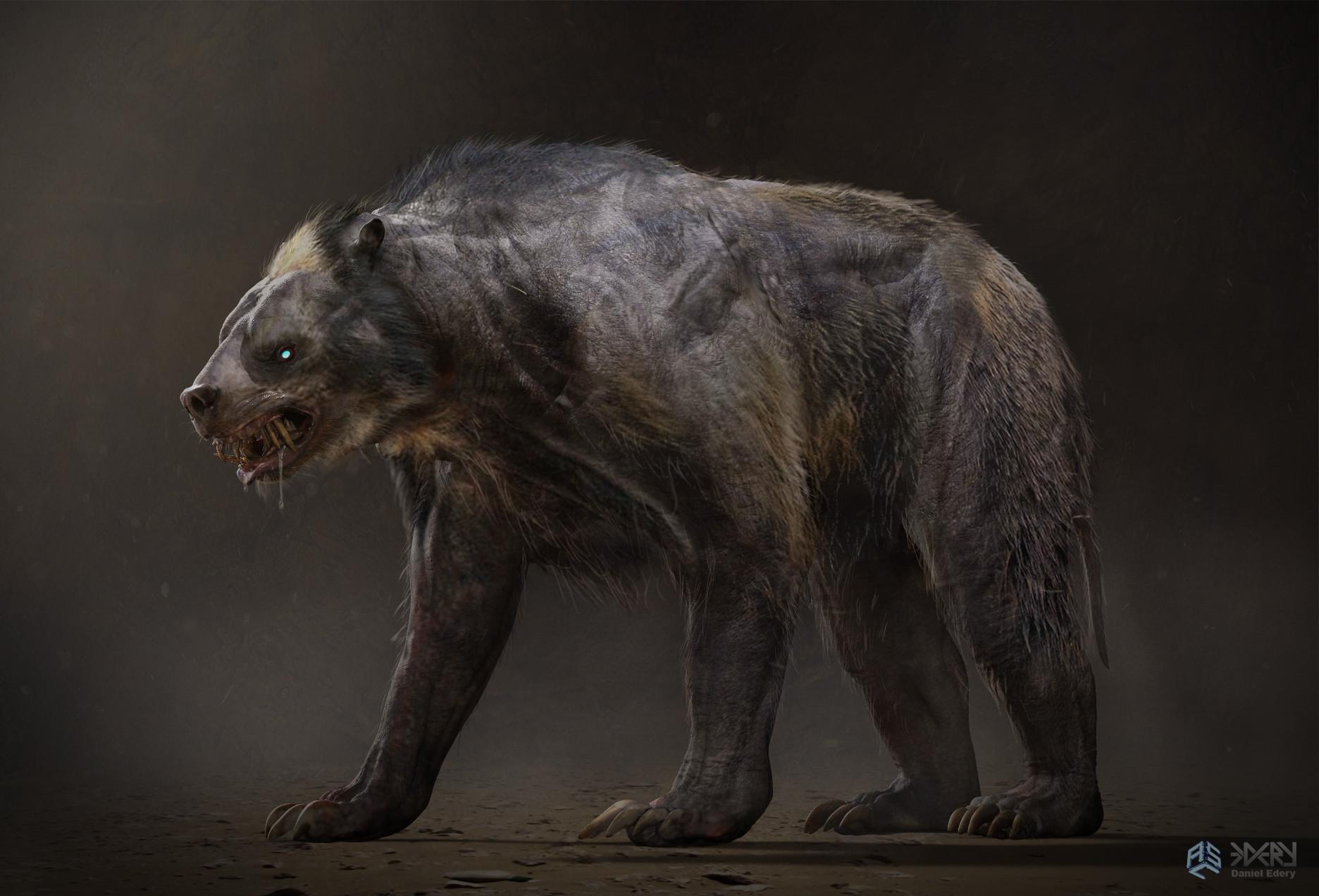 Daniel edery bear v02 001