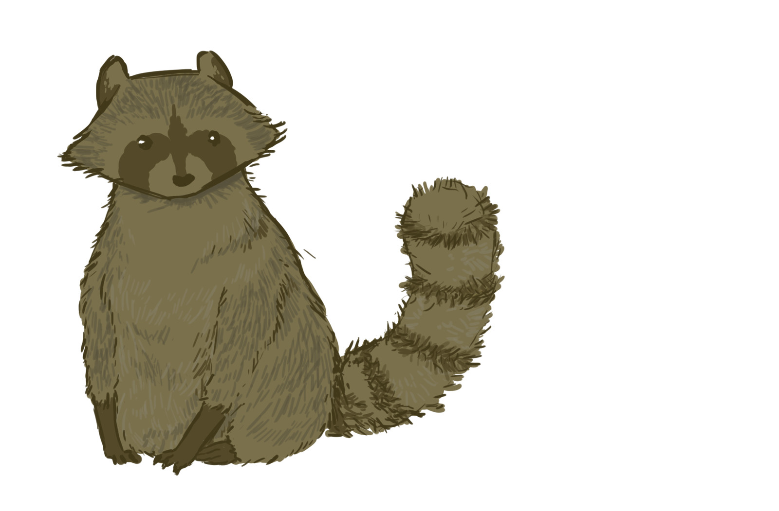 A roommate felt sad, and raccoons always make her smile.