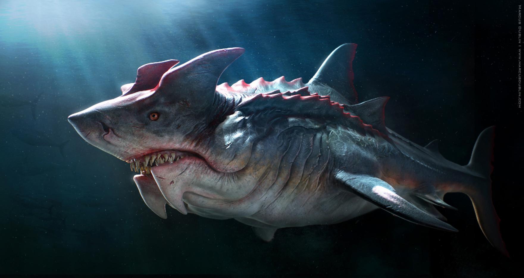 [DùralaNoël]Calendrier de l'Avent 2020 Marcus-dublin-devil-shark-beauty-render-01